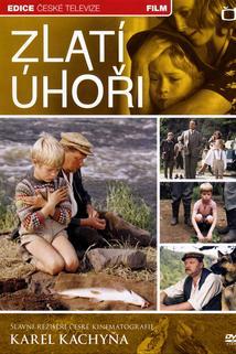 Plakát k filmu: Zlatí úhoři