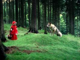 Kdopak by se vlka bál?