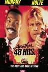 Dalších 48 hodin (1990)