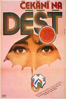 Plakát k filmu: Čekání na déšť