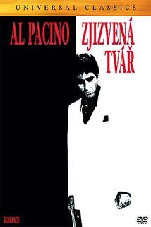 Plakát k filmu: Zjizvená tvář
