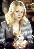 Pravá blondýnka 2 - Legally Blonde 2