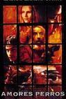 Amores Perros - Láska je kurva (2000)