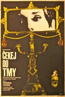 Plakát k filmu: Čekej do tmy