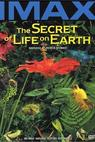 The Secret of Life on Earth (1993)