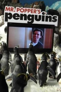 Plakát k filmu: Pan Popper a jeho tučňáci