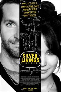 Plakát k filmu: Terapie láskou