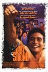 Mistr neznámého boje (1993)