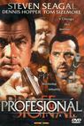 Profesionál (2001)
