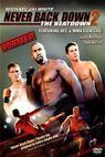Nikdy to nevzdávej 2 (2011)