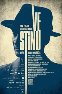 Plakát k filmu: Ve stínu