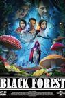 Černý les (2012)