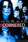 Cornered (2011)
