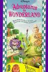 Adventures in Wonderland (1991)