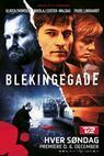 Blekingegade (2010)