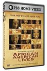 African American Lives 2 (2008)