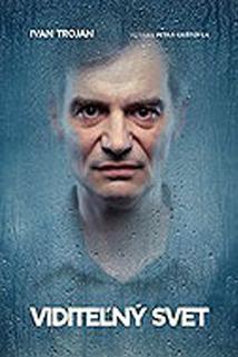 Plakát k filmu: Viditelný svět