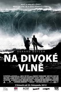 Plakát k filmu: Na divoké vlně