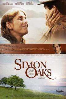 Plakát k filmu: Šimon a duby