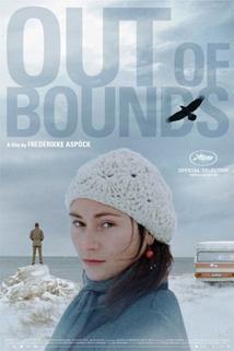 Plakát k filmu: Labrador