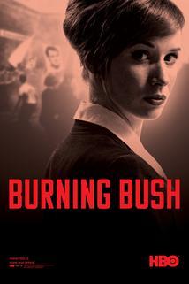 Plakát k filmu: Hořící keř