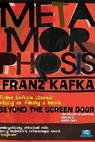 Metamorphosis: Beyond the Screen Door (1997)