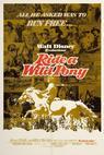 Divoký poník (1975)