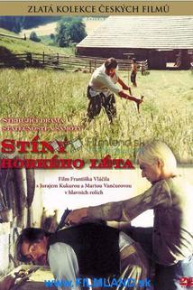 Plakát k filmu: Stíny horkého léta