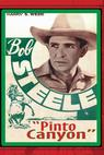 Pinto Canyon (1940)