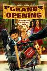 Grand Opening (2006)