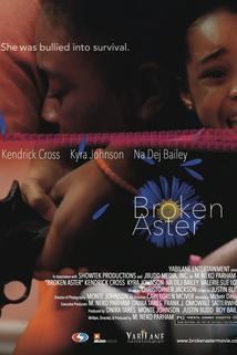 Broken Aster  - Broken Aster