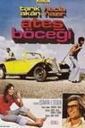 Ates böcegi (1975)