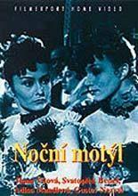 Plakát k filmu: Noční motýl