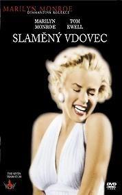 Plakát k filmu: Slaměný vdovec