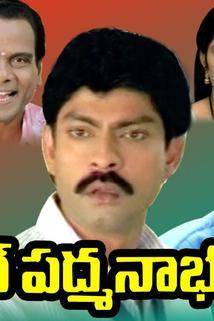 Budget Padmanabham
