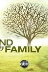 Find My Family (2009)