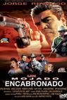 Un mojado encabronado (2005)