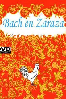 Bach en Zaraza