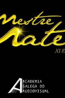 Gala premios Mestre Mateo 2012