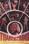 Titanes en el ring (1973)