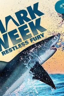 Shark Attack Survival Guide