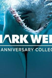 Shark Attack Survivors