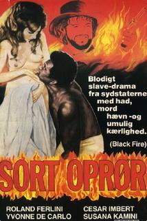 Fuego negro