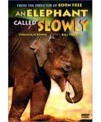 Obklíčeni slony  - An Elephant Called Slowly