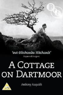 Cottage on Dartmoor, A