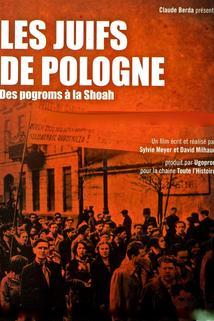 Les Juifs de Pologne, des pogroms à la Shoah