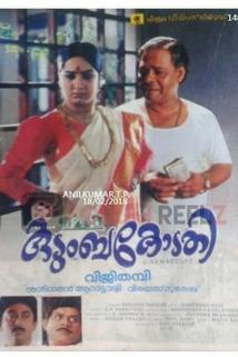 Kudumbakodathi