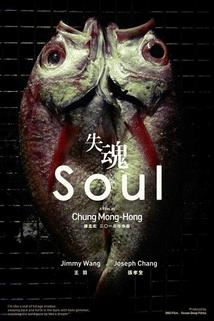 Soul  - Shi hun