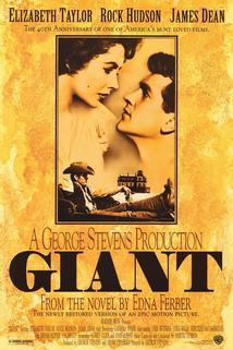 Plakát k filmu: Obr