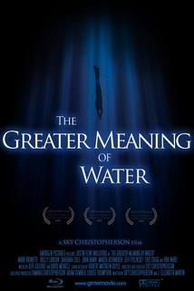 The Greater Meaning of Water  - The Greater Meaning of Water